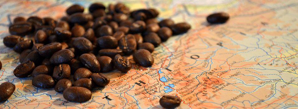 Storia del Caffè : Curiosità, Leggende e Diffusione